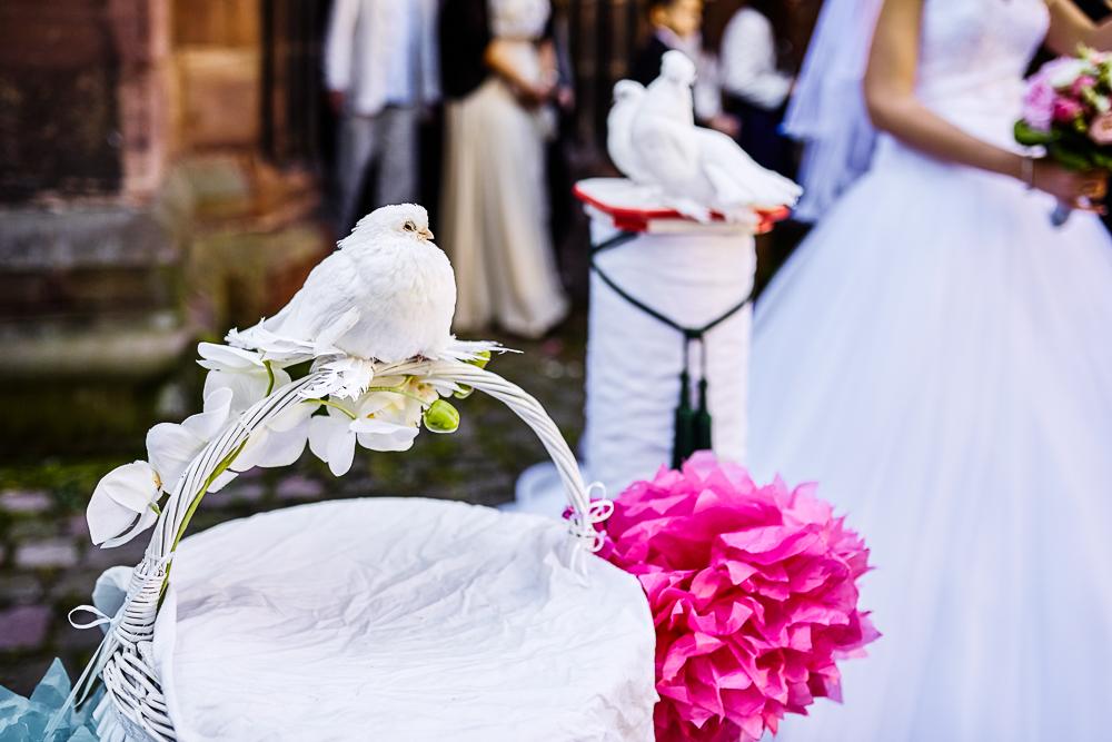 Hochzeitsfotos_Anna_Dominik_web -116